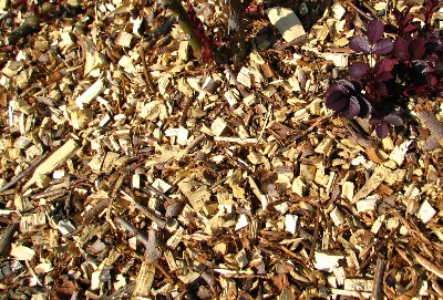 recyclage copeaux branches BRF mulching